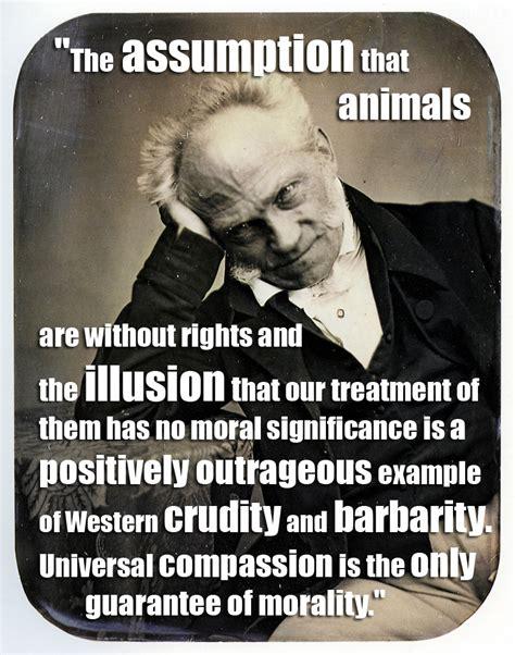 Schopenhauer Quotes On