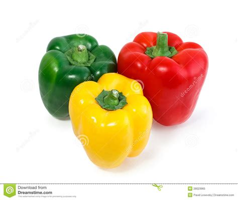 colored peppers three colored peppers vegetables isolated stock image