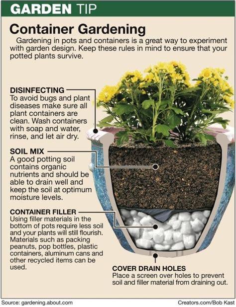 planting  large pots  buckets