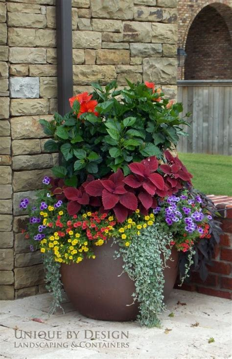 Potted Garden Ideas 748 Best Container Gardening Ideas Images On
