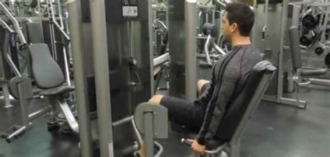 seated hip abduction bodybuilding wizard