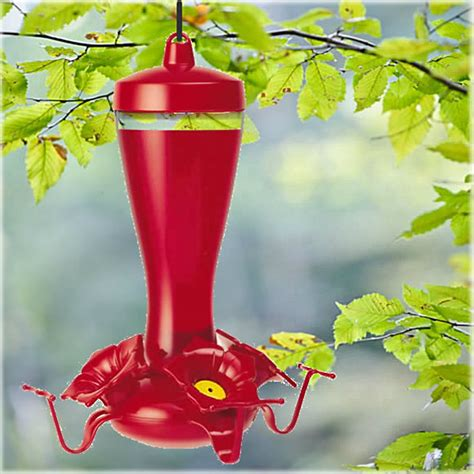 buy the woodstream 453 2 hummingbird feeder 10 oz