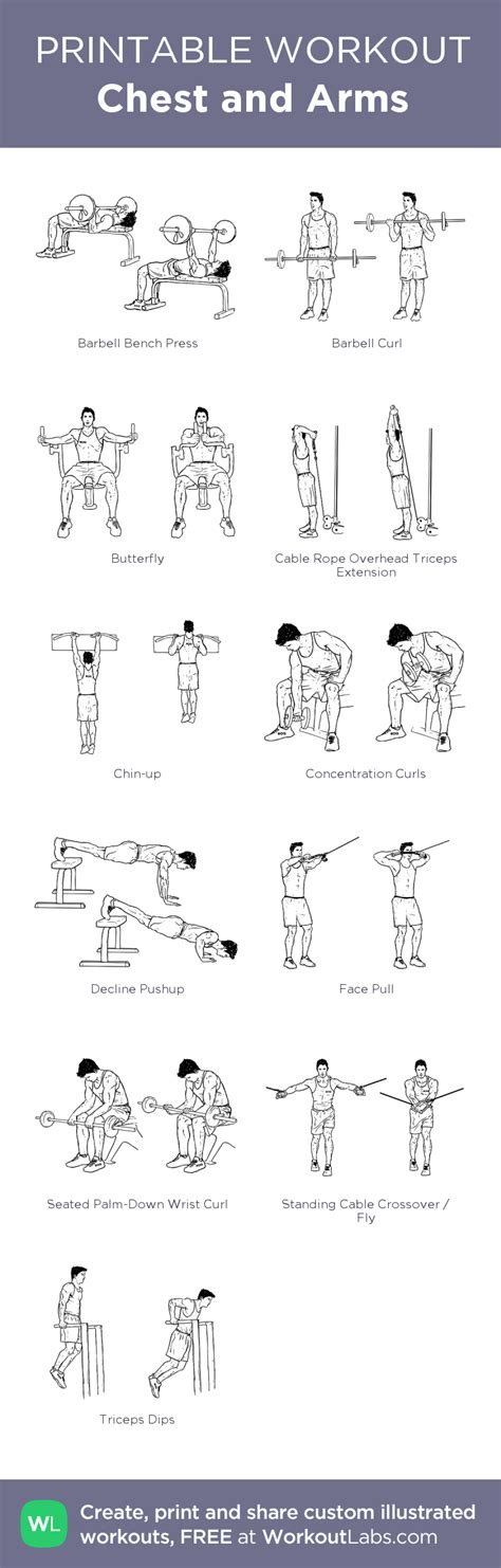 chest and arms my custom printable workout by