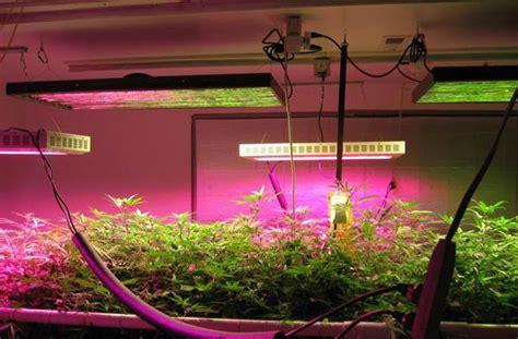 top led grow light