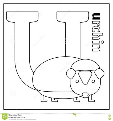 coloring pages letter u animals urchin letter u coloring page stock vector illustration