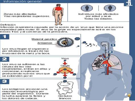 cadena epidemiologica gripe comun la gripe