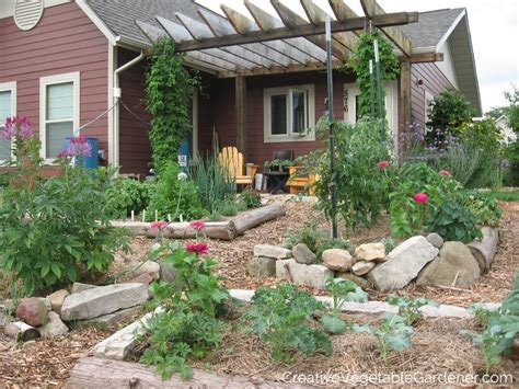 when to till soil for a vegetable garden creative vegetable gardener stop tilling your vegetable