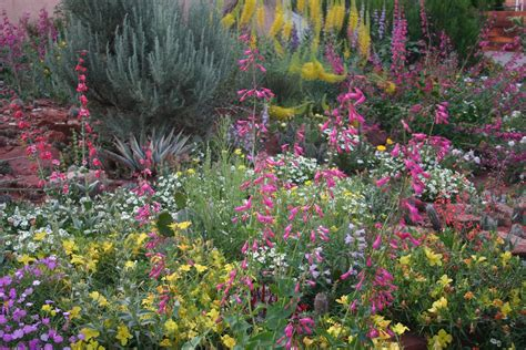 co horts free xeriscape garden tour in pueblo