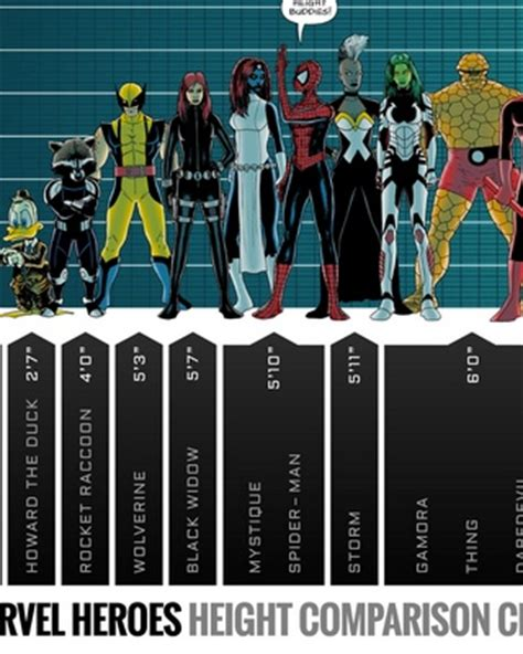 marvel actor height chart marvel superheroes height comparison chart geektyrant