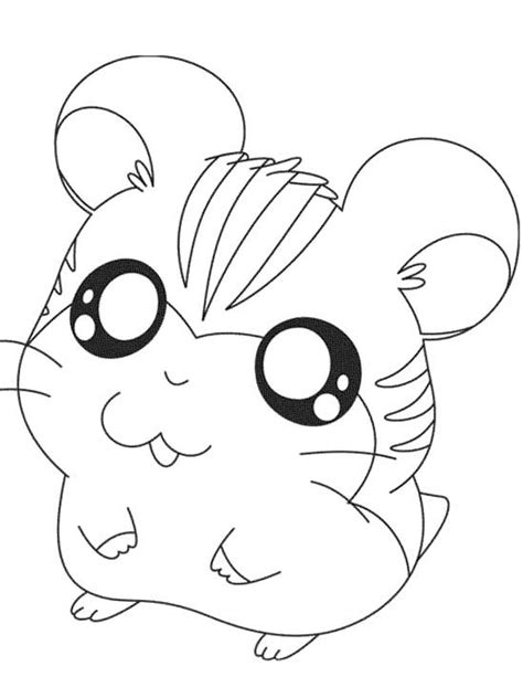 hamster coloring pages freecoloring4u com