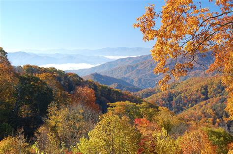 fall colors the 5 best places to see fall colors in the smoky mountains