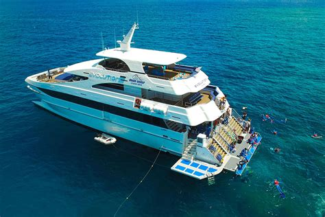 reef experience catamaran evolution sets the benchmark for great barrier reef