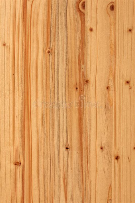 texture jpg oak panel wood wood panel texture stock image image of detail