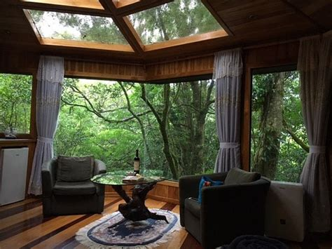 balcony in the forest new york review book books regelm 228 223 ige besucher picture of canopy treehouses