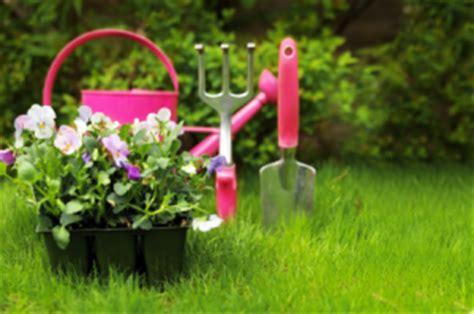 flower beds for beginners flower garden ideas beginners pdf