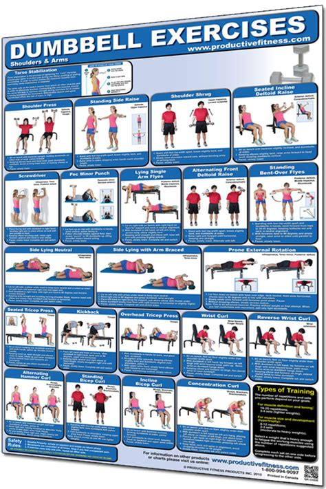 productive fitness poster shoulders and arms workout