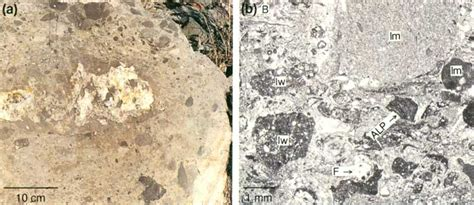 mudstone thin section texas bureau of economic geology guide to the permian