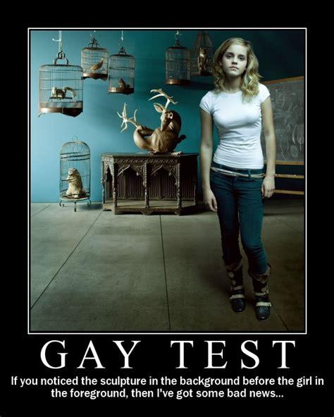 Gay Joke Memes - gay test