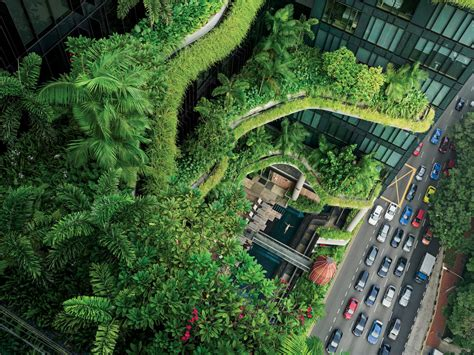 singapore takes inventive approaches  urban issues