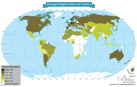 average height what is the average height of males around the world