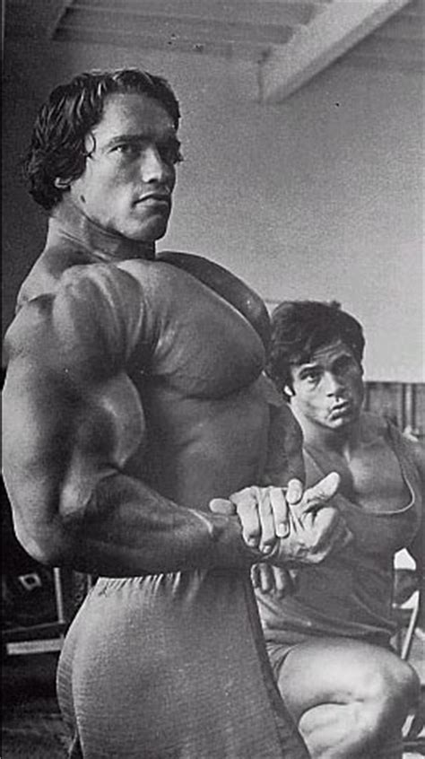 arnold schwarzenegger bench press max arnold schwarzenegger gallery muscle and brawn