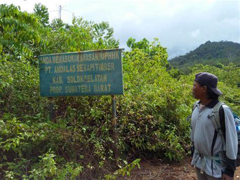 Timbangan Jongkok menyelisik tambang emas ilegal di solok selatan mongabay