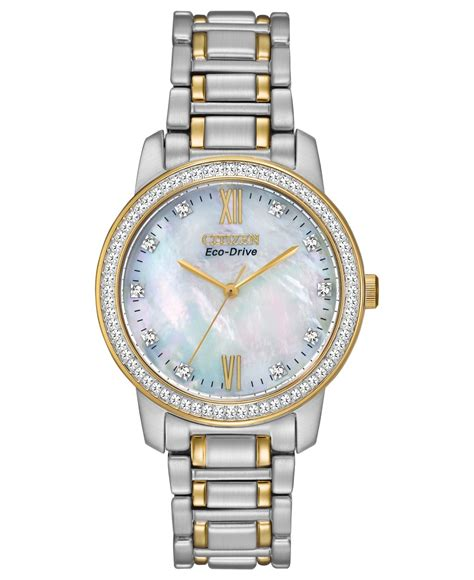 citizen s eco drive two tone stainless steel