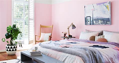 pink or blue bedroom jelanie