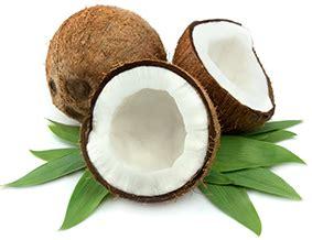 olio di lino alimentare dove si compra olio di cocco dove comprarlo come usarlo capelli viso
