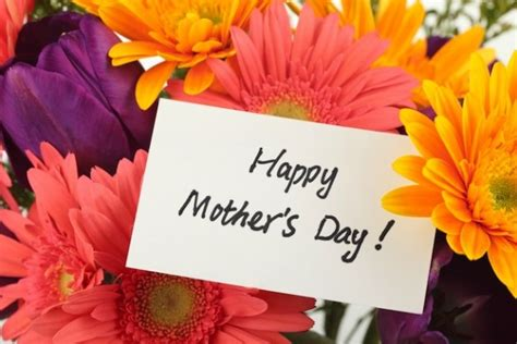 mother s day flower 25 best mothers day flowers ideas