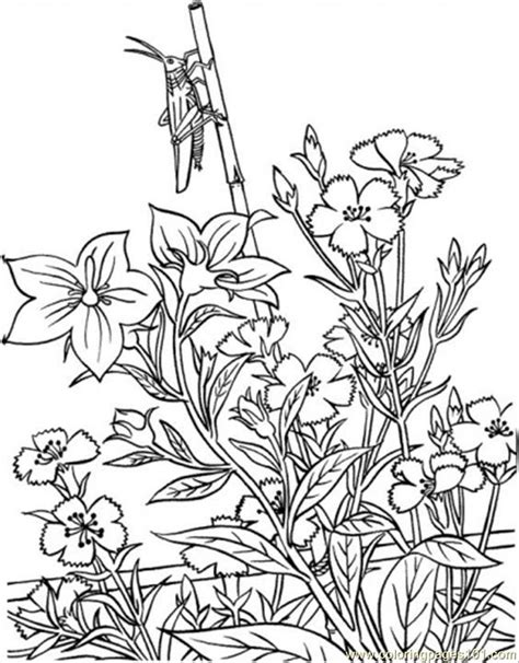 free coloring pages garden garden coloring pages printable coloring home