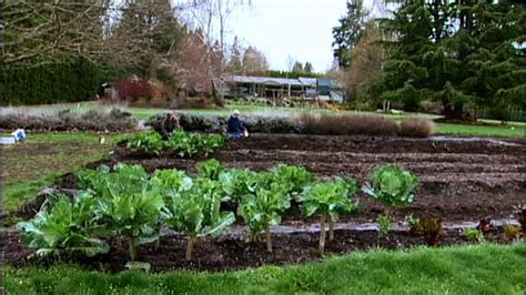 Organic Foods Backyard Agriculture Video