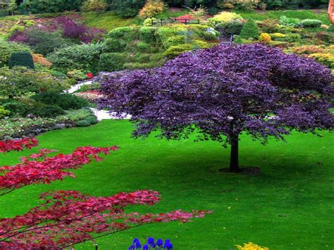 Picture Flower Garden Flower Garden Backgrounds Wallpaper Cave