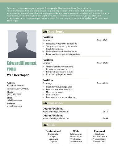 22 Contemporary Resume Templates Free Download Hloom Professional Resume Templates