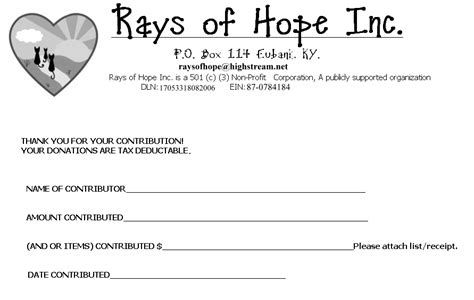 501 c 3 donation receipt template rays of inc donations