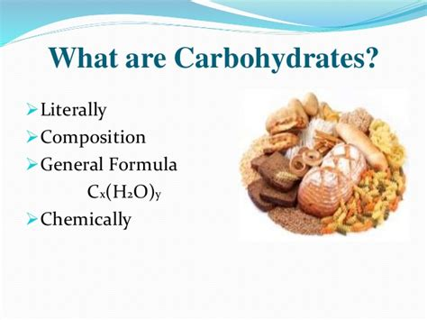carbohydrates zoology carbohydrates and lipids