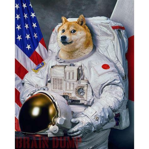 Astronaut Meme - doge astronaut page 3 pics about space