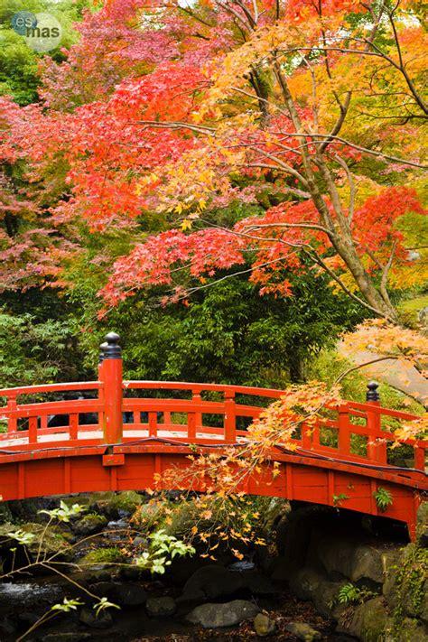 imagenes de jardines increibles fotogaler 237 a paisajes incre 237 bles de oto 241 o esmas com