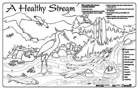 fish habitat coloring pages sream coloring download sream coloring