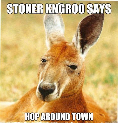 Kangaroo Meme - captain kangaroo memes
