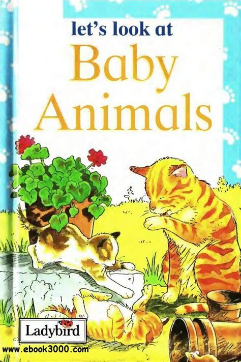 Lets Ify The Look Book by Baby Animals Let S Look At Free Ebooks