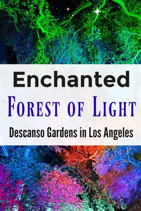 lights of the discount tickets discount tickets to enchanted forest of lights at descanso