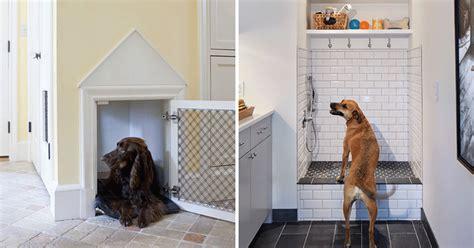 arredamento per cani arredamenti per cani design sweetanimals