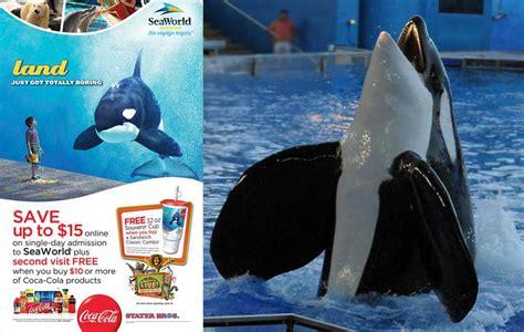 happy dolphin day der bekanntesten inoffizielle