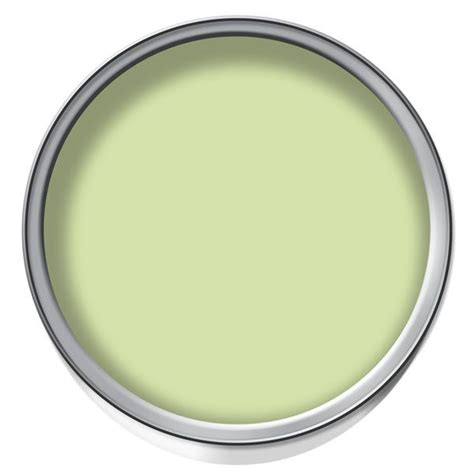 Dulux Paint 5072 wilko colour matt emulsion paint lime sorbet 2 5ltr at