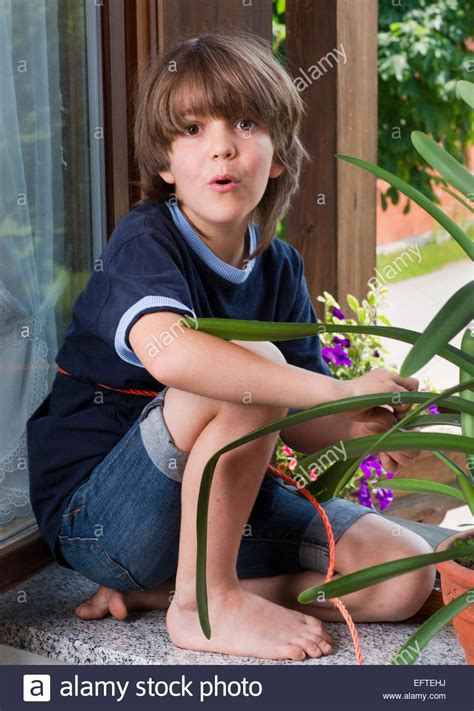 what to get a 7 year old boy for christmas seven year boy child age 7 years portrait plants flowers stock photo royalty free