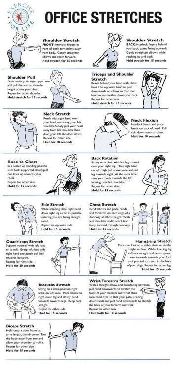 printable exercise program for seniors 17 best images about senior exercise printable on