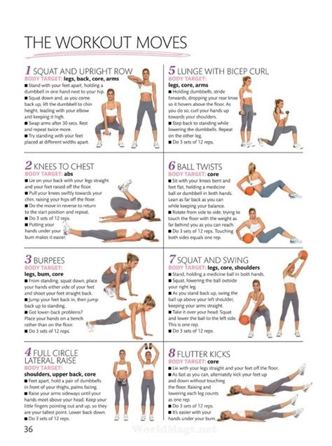 shape up size beginner s workout burning