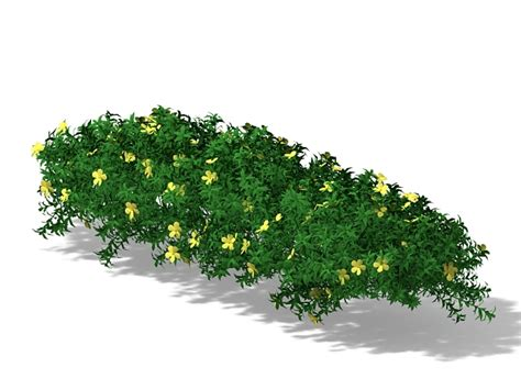 flowering ground cover plants 3d model 3ds max files free