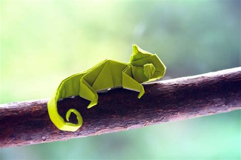 Cool Origami Animals - best 25 origami animals ideas on